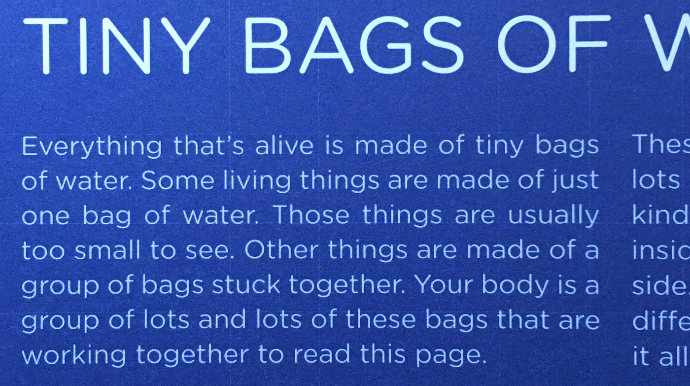 you are a lump of tiny bags of water